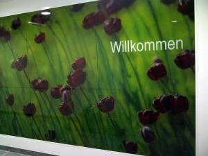 17-020-glasbildwand-in-einer-klinik-in-hof