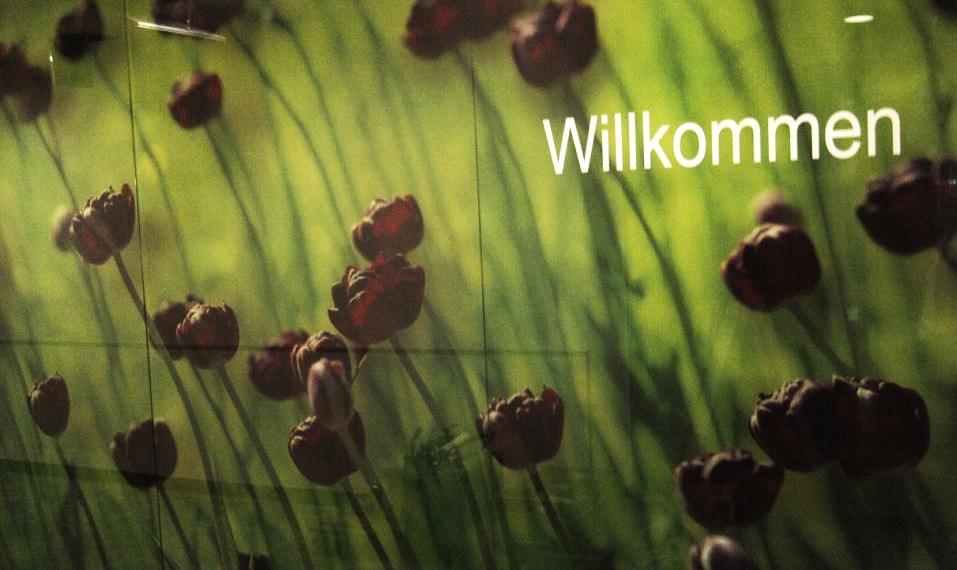 1.01 Glasbildwand im Eingangsbereich bei einer Klinik in Hof